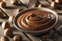 Homemade Chocolate Hazelnut Spread royalty free stock images
