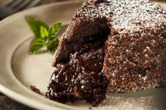 Homemade Chocolate Lava Cake Dessert Stock Photos