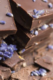 Homemade chocolate with lavender flowers Royalty Free Stock Photography