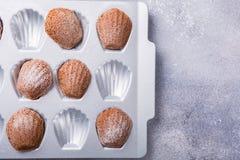 Homemade chocolate madeleine cookies Stock Image