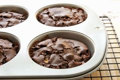 Homemade Chocolate Marshmallow Muffins in Muffin Pan Royalty Free Stock Image