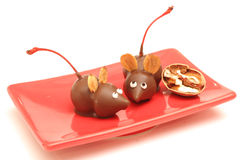 Homemade chocolate mice angle. Shot of homemade chocolate mice at angle with cherries & nuts Royalty Free Stock Photography