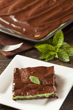 Homemade Chocolate and Mint Brownie Royalty Free Stock Photos