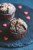 Homemade chocolate muffin Royalty Free Stock Photography