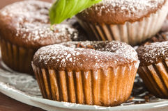 Homemade chocolate muffins Stock Images