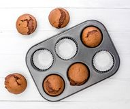 Homemade chocolate muffins in baking pan Royalty Free Stock Photo