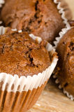 Homemade chocolate muffins. Closeup take of some homemade chocolate muffins Royalty Free Stock Photography