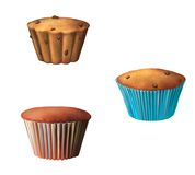 Homemade muffins with chocolate Stock Photography