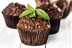 Homemade chocolate muffins in paper cupcake holder Stock Images