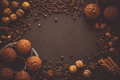 Homemade chocolate muffins with spices Stock Photography