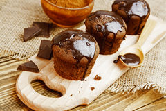 Homemade chocolate muffins Royalty Free Stock Photography