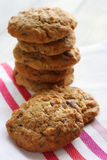 Homemade chocolate and nut cookies Stock Image