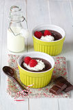 Homemade chocolate pudding Royalty Free Stock Image