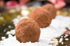 Homemade chocolate truffles with coconut flakes Stock Photos