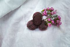 Homemade chocolate truffles . Handmade sweets. royalty free stock photography