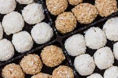 Homemade chocolate truffles Stock Images
