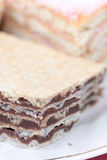 Homemade chocolate wafer macro photography Stock Image