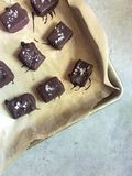 Homemade chocolates filled with almond butter, topped with sea salt Royalty Free Stock Image