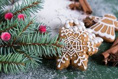 Homemade christmas cookies with decor Royalty Free Stock Images