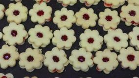 Homemade Christmas Cookies stock video
