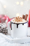 Homemade christmas hot chocolate with whipped cream, cacao and cinnamon on a plate Stock Images