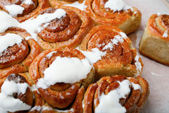 Homemade Cinnamon Buns closeup Stock Images