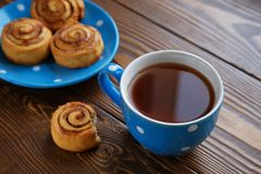 Homemade cinnamon rolls lie on a blue plate on a wooden table. Nearby is a mug of black tea and a bitten-off bun. Healthy organic royalty free stock image