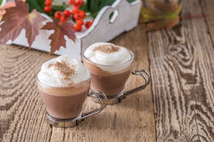 Homemade cinnamon and spice hot cocoa with whipped cream. Thanks Stock Photos