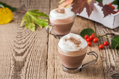 Homemade cinnamon and spice hot cocoa with whipped cream. Thanks Royalty Free Stock Images