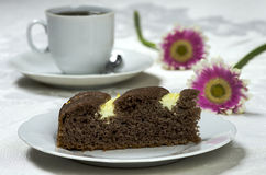 Homemade cocoa cake with cream cheese Royalty Free Stock Photography
