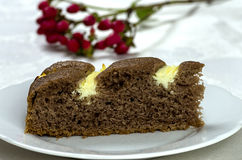 Homemade cocoa cake with cream cheese Royalty Free Stock Photo