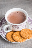 Homemade cocoa or hot chocolate  with cookies Stock Photography