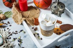 Homemade cocoa with marshmallows, spices and pumpkin, cozy autumn still life, autumn mood concept, seasonal craft decor, hugge lif royalty free stock photo