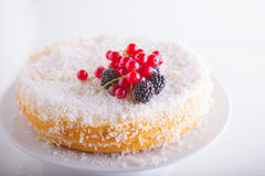 Homemade coconut cake. Served on a white plate Stock Photography