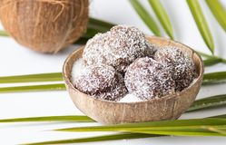 Homemade coconut cookies in a shell Royalty Free Stock Photo