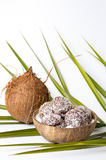 Homemade coconut cookies in a shell Royalty Free Stock Photos