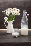 Homemade coconut milk in a glass next to ox-eye daisies Royalty Free Stock Images