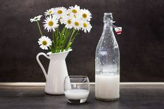 Homemade coconut milk in a glass next to ox-eye daisies Stock Photos