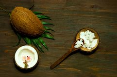 Homemade coconut products on wooden table background. Copy space stock photos