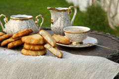 Homemade cocos biscuits Royalty Free Stock Images