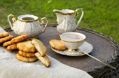 Homemade cocos biscuits Stock Photography
