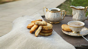 Homemade cocos biscuits Stock Image