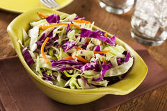 Homemade Coleslaw with Shredded Cabbage and Lettuce Stock Photography