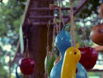 Homemade colorful squash bird feeders Royalty Free Stock Photography