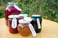 Homemade compote Stock Photography