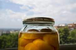 Homemade cooked apricot compote Stock Image