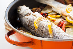 Homemade cooked fish Royalty Free Stock Photography