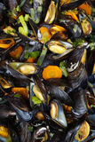 Homemade cooked mussels Royalty Free Stock Photography