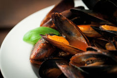 Homemade cooked mussels with garlic, tomato sauce, italian herbs, white wine and fresh basil in a plate Stock Photo