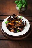 Homemade cooked mussels with garlic, tomato sauce, italian herbs, white wine and fresh basil in a plate Royalty Free Stock Photography
